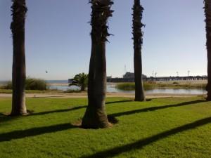 Santa Barbara palms com