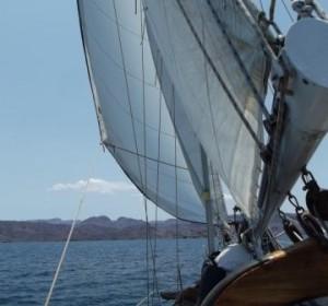 ell burro sailing com