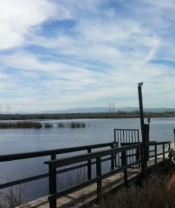 River view com